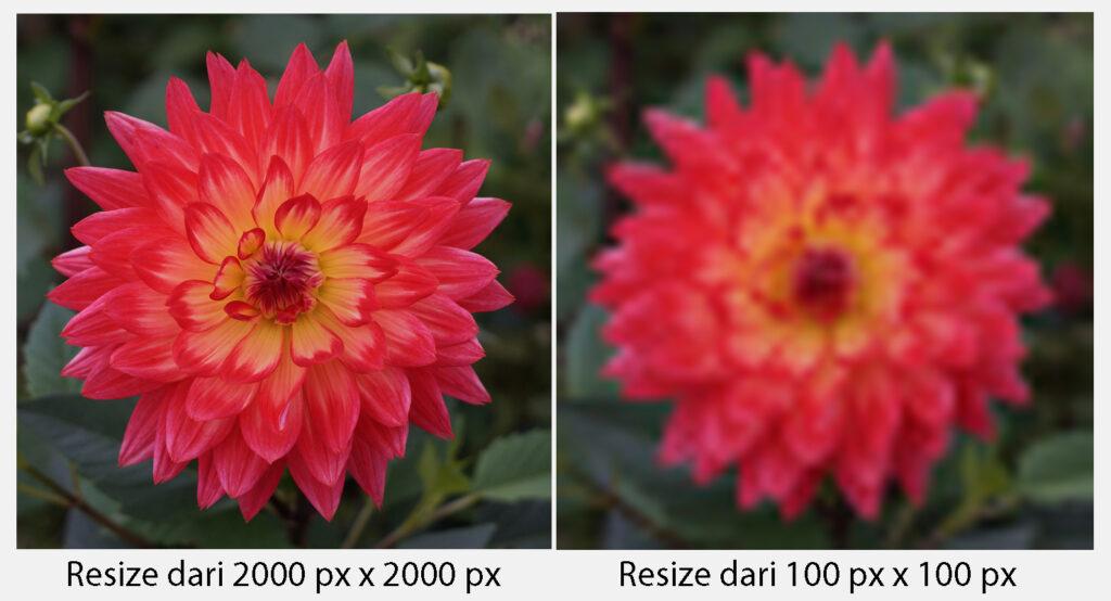 Resolusi gamabr dengan Pixel yang sama
