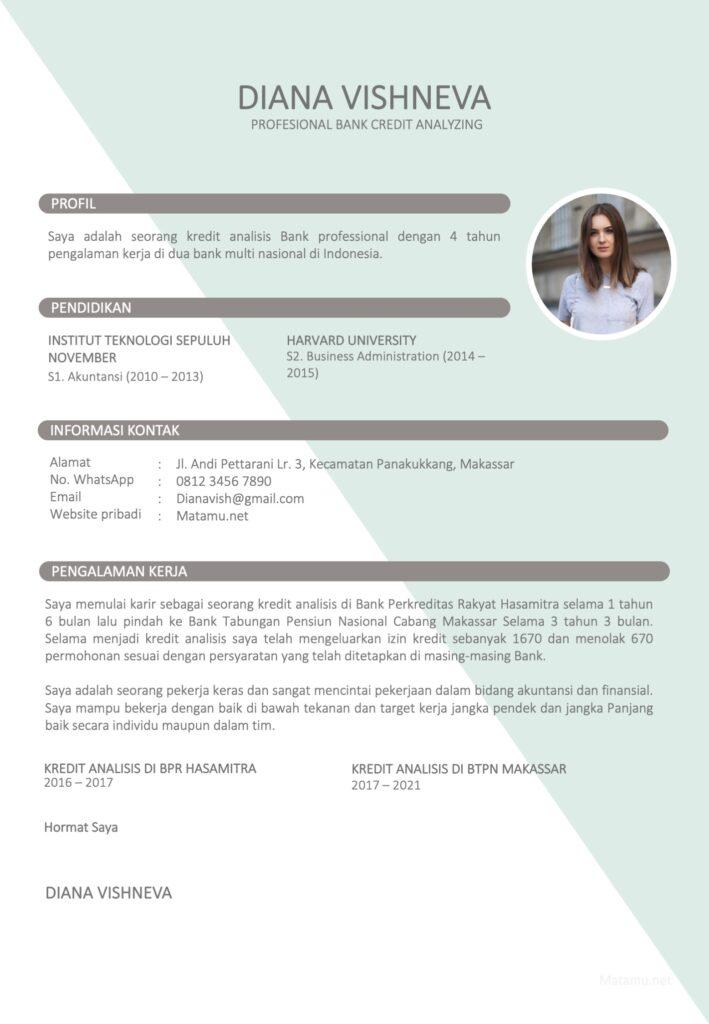 Contoh CV kreatif untuk Posisi Kredit Analisis Di Bank
